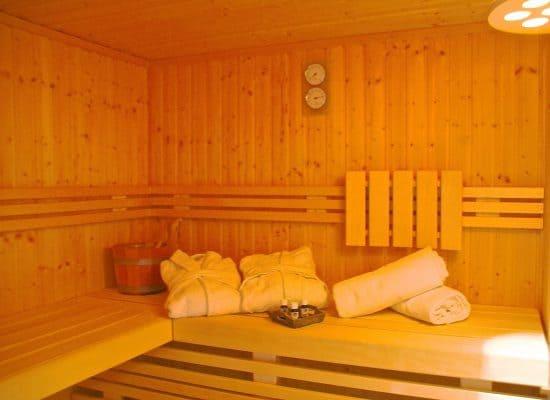 Fleesensee Ferienhaus Sauna