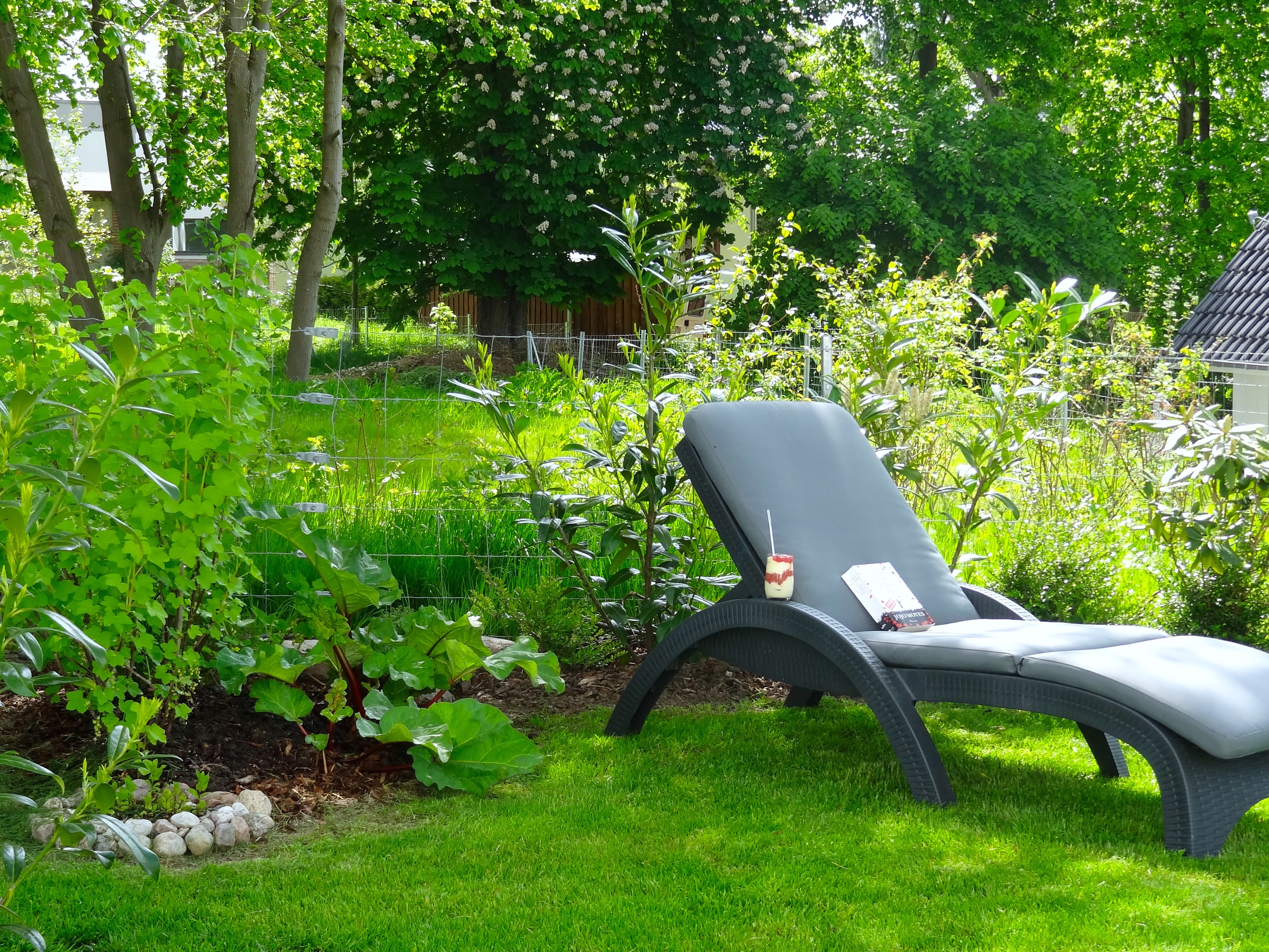 Ferienhaus Fleesensee Garten