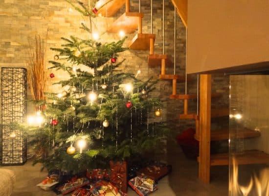 Fleesensee Ferienhaus Weihnachtsbaum mit Kamin